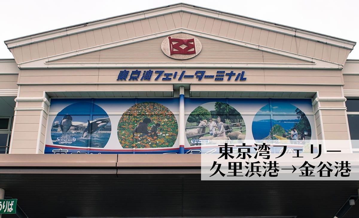 東京湾フェリー@久里浜港-金谷港 カモメが近距離で見れるぞ!