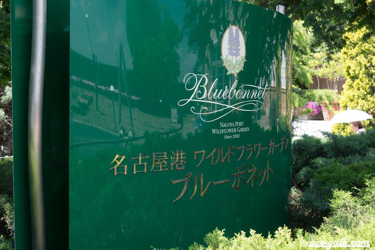 名古屋港ワイルドフラワーガーデン「ブルーボネット」に行った話