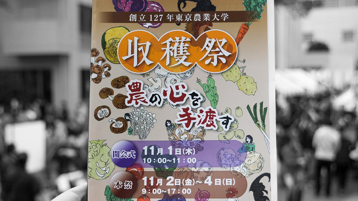 東京農業大学の収穫祭へ 初めての学園祭でテンション爆上げ #東京農業大学 #収穫祭2018