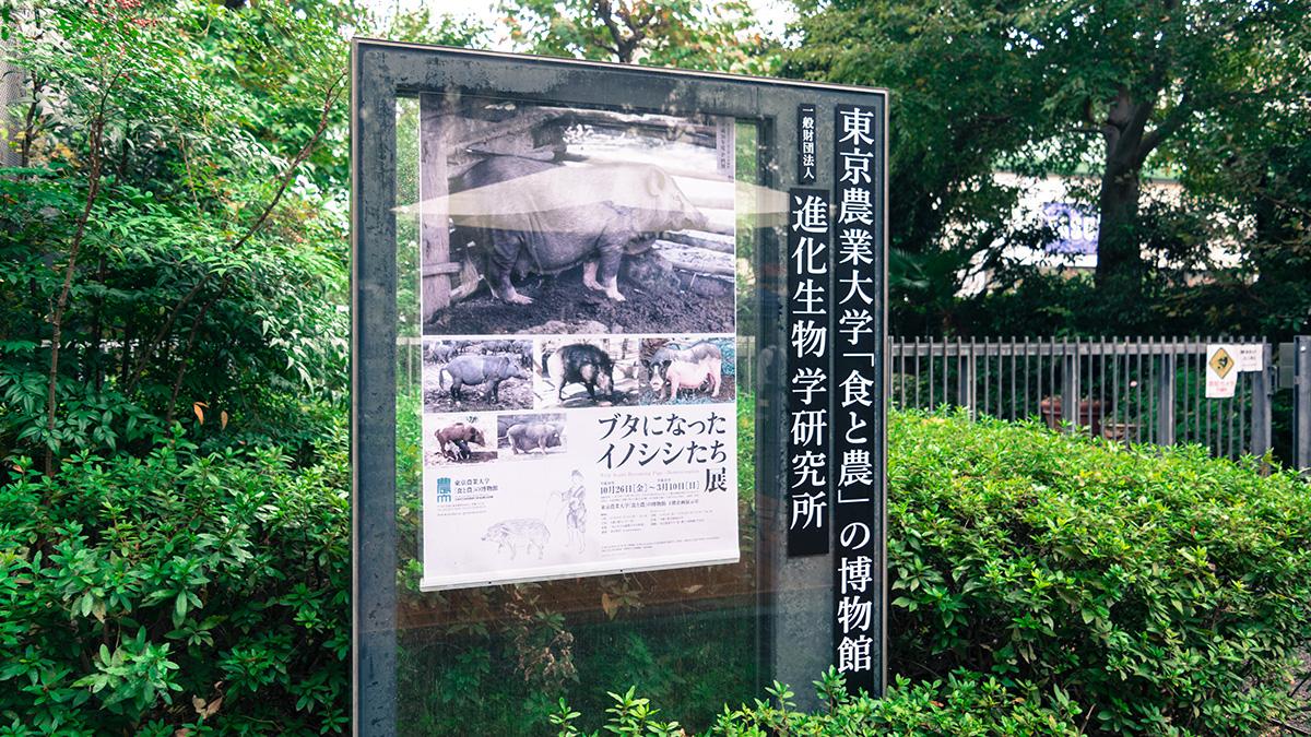 「食と農」の博物館@東京農業大学 展示物も建物も楽しめるところ