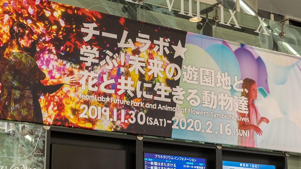 名古屋市科学館で開催、チームラボの「学ぶ!未来の遊園地と、花と共に生きる動物達」