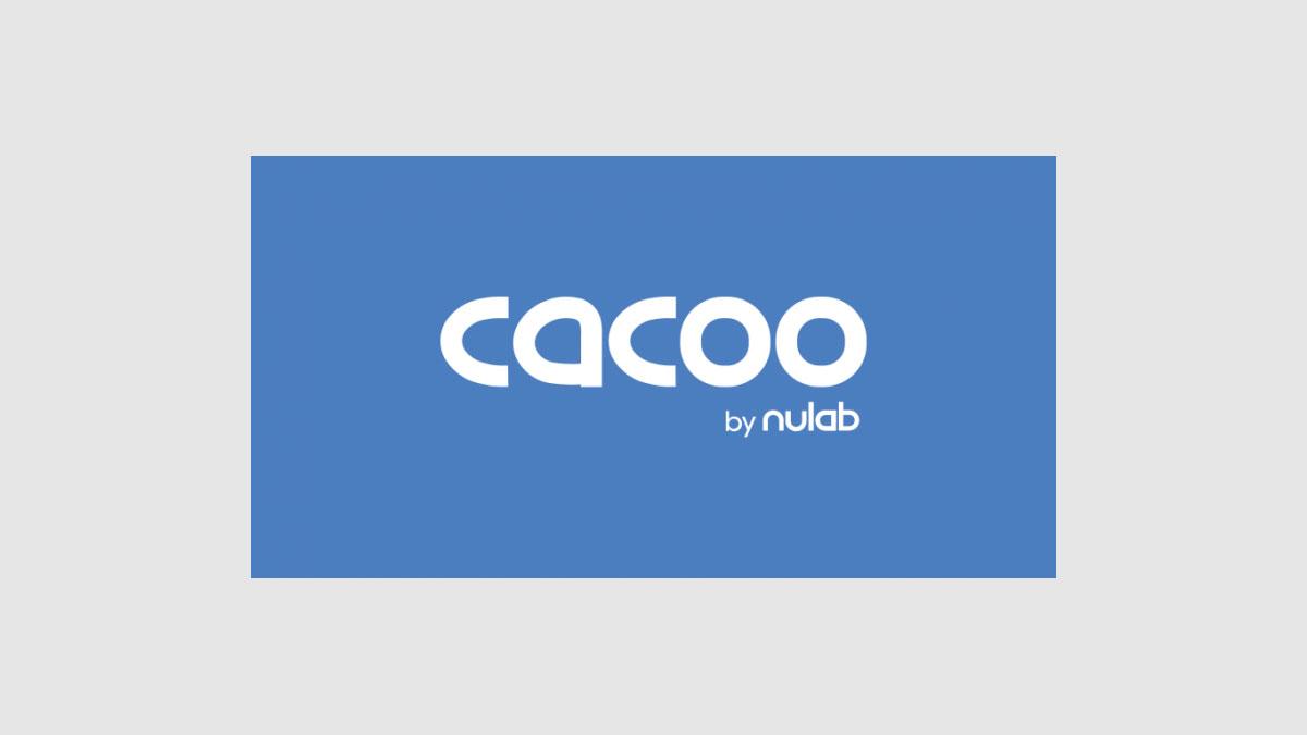 フローチャートやプレゼン資料をオンラインで作画するなら「cacoo」がオススメ。無料プランあり